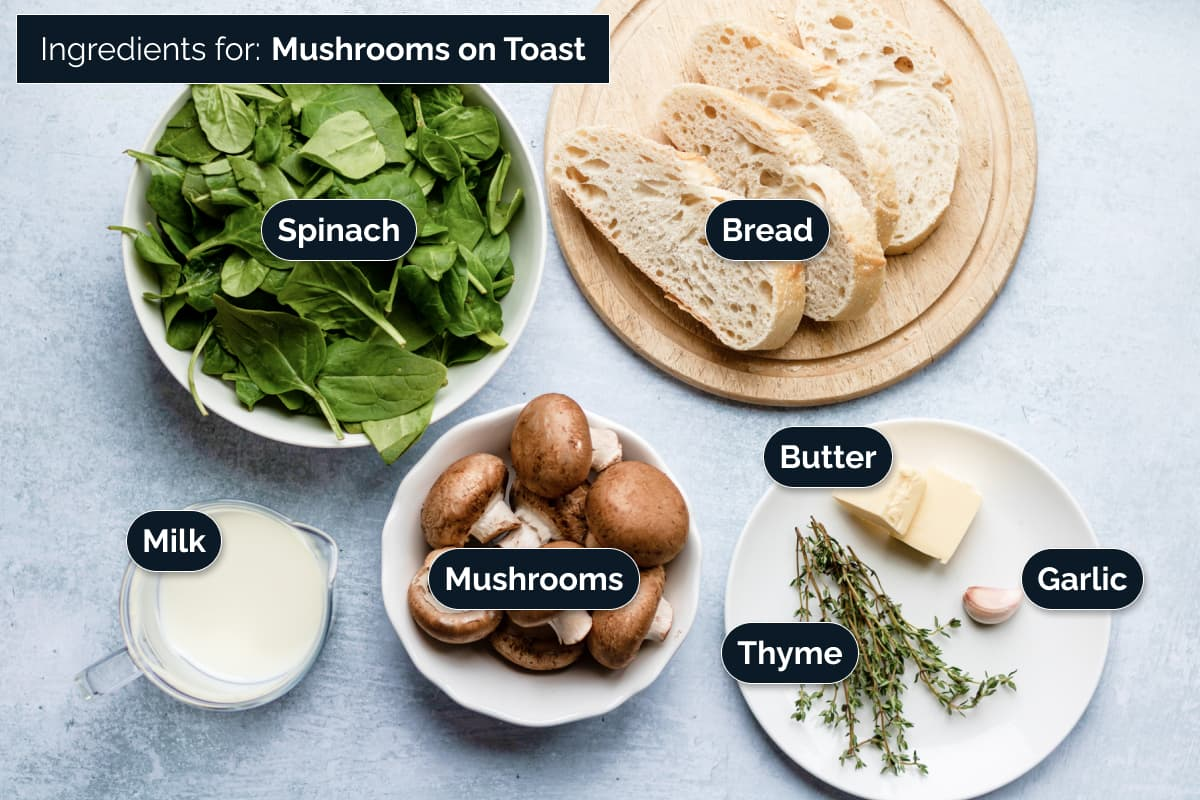 Ingredients for making the recipe
