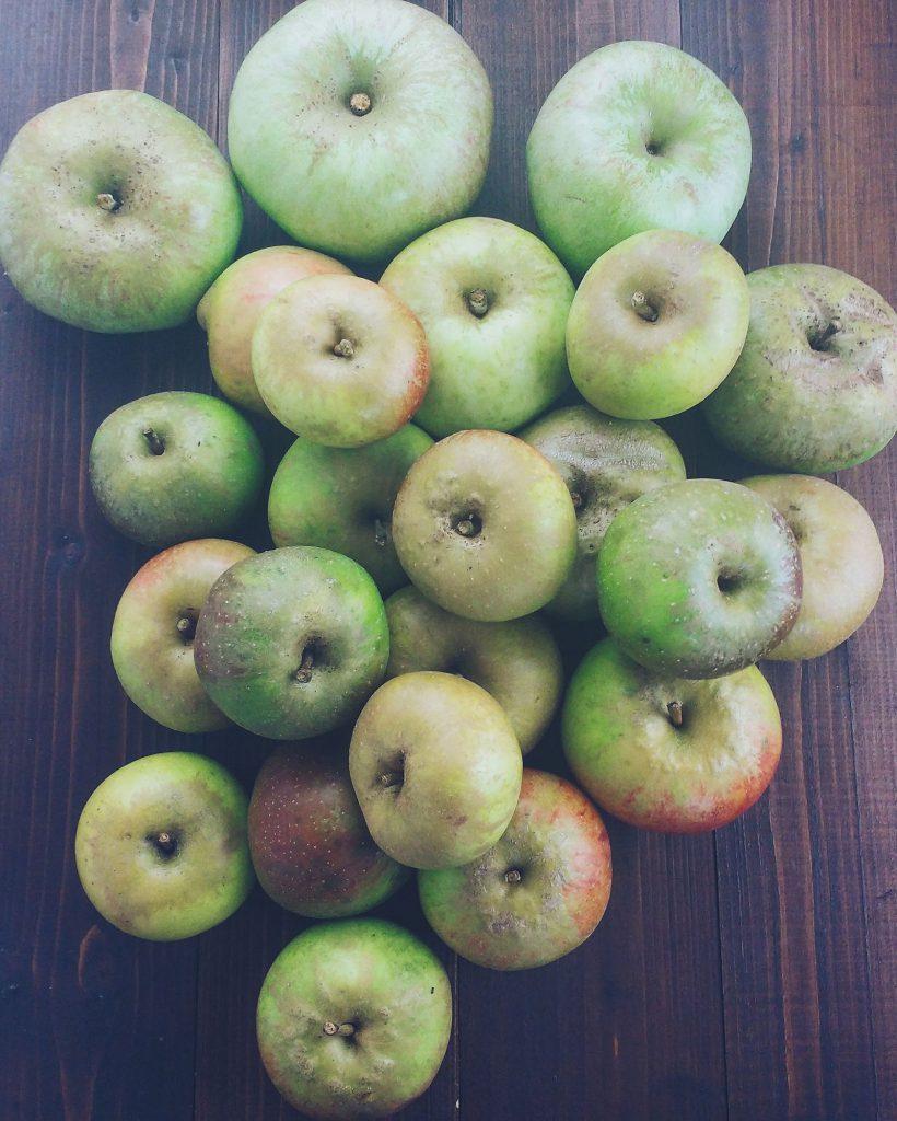 Irish Apple Tart - thelastfoodblog.com
