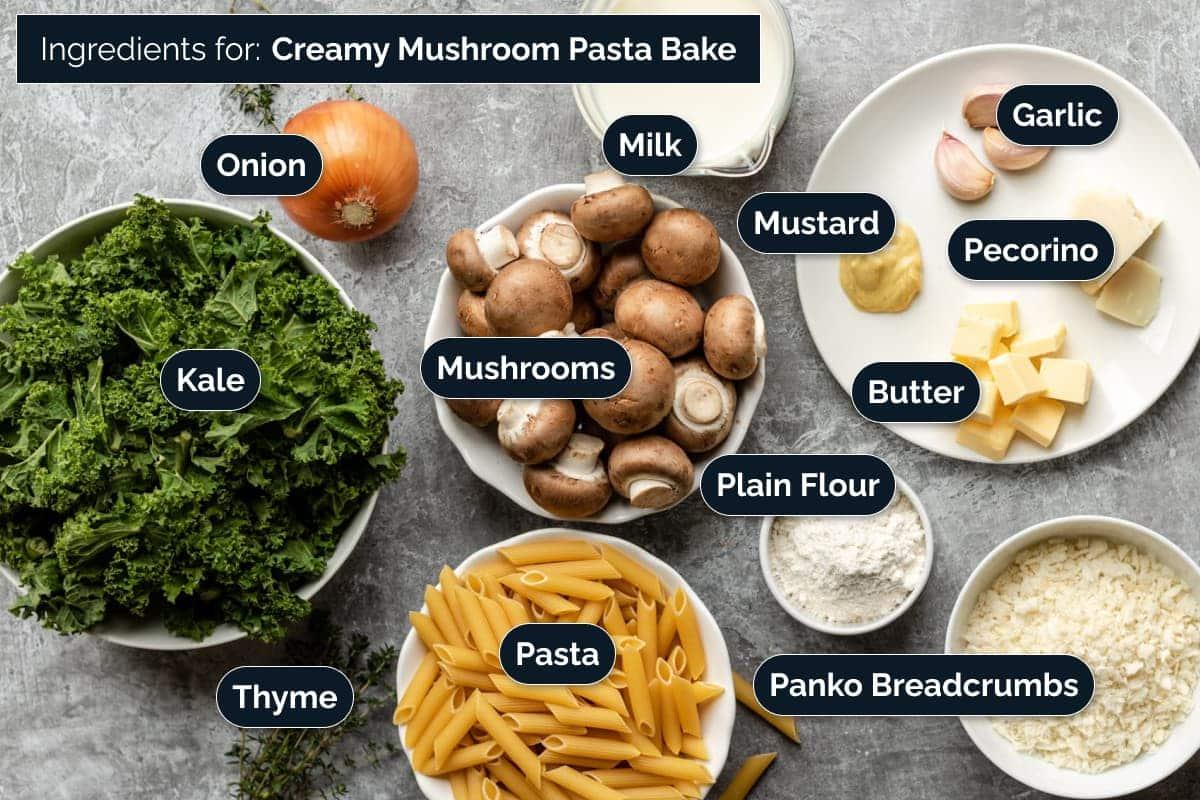 Ingredients for making Creamy Mushroom Pasta