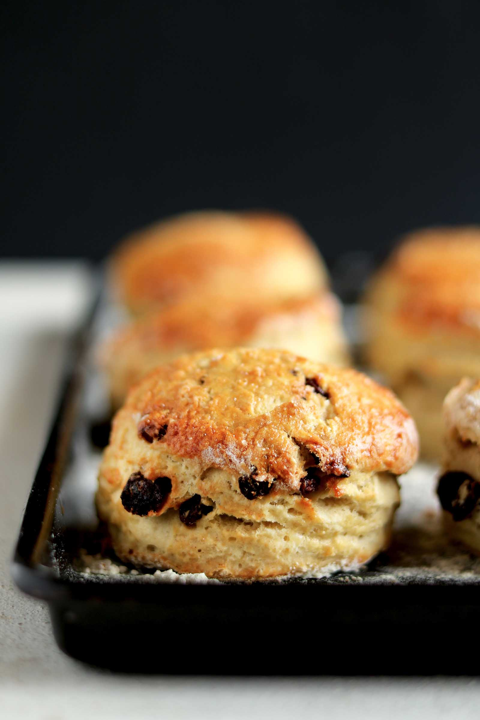 irish scones plain