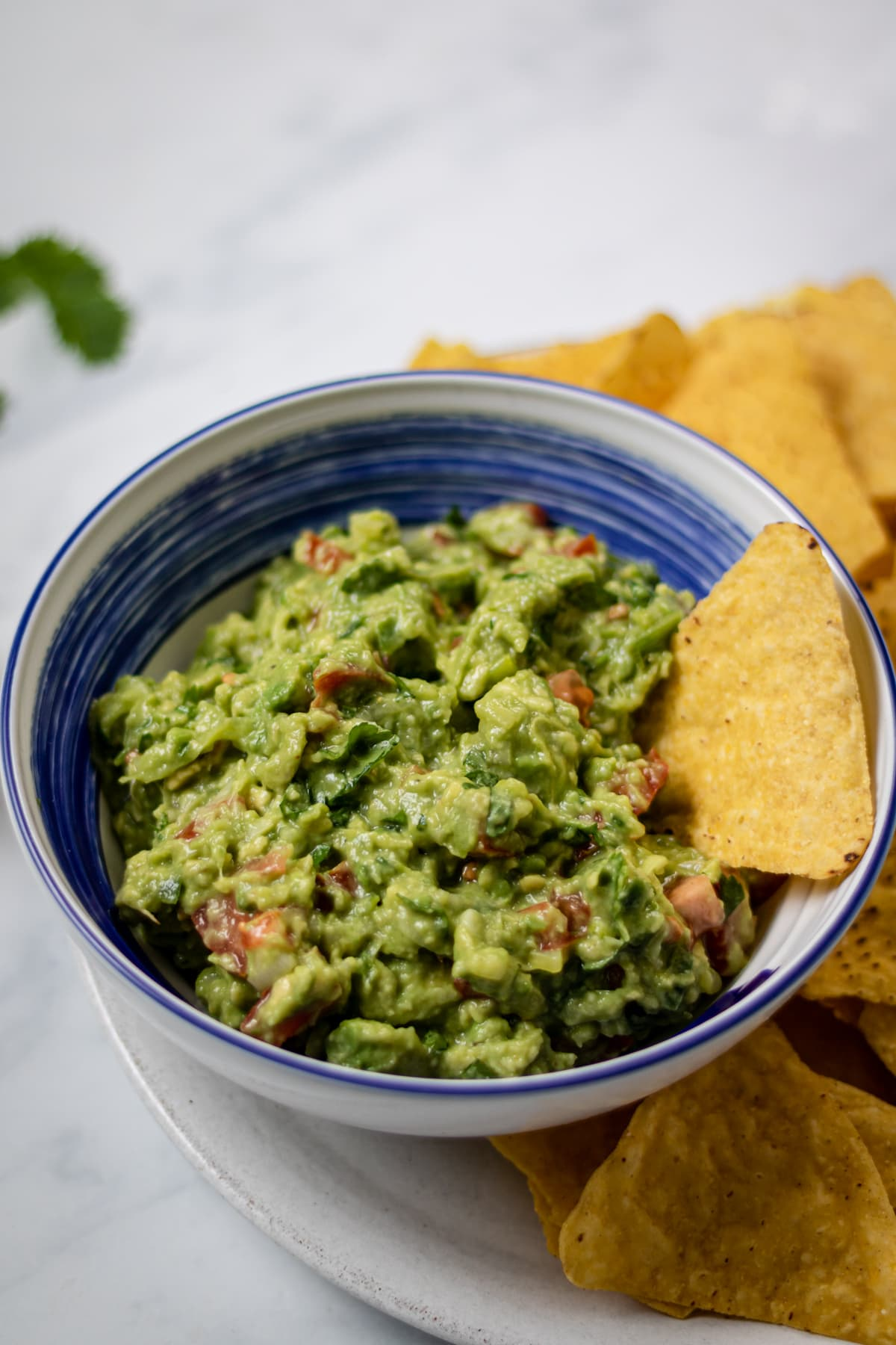 side view of homemade guacamole in a bowl on a plate with tortilla chips.